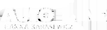 slider-logo-img
